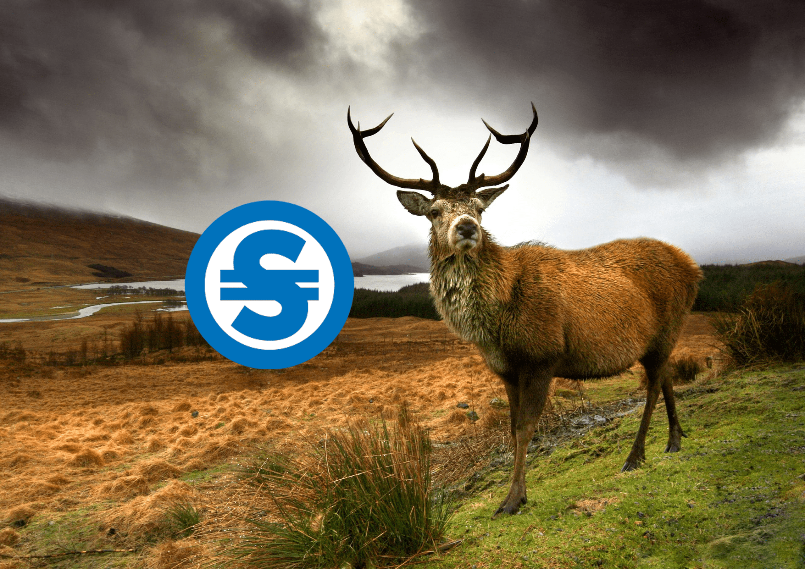 The Scotcoin Network